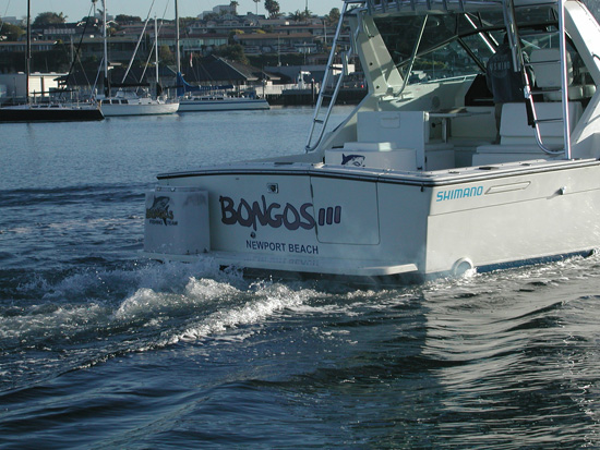 6 pack fishing charters dana point california 6 pack for Fish count dana point