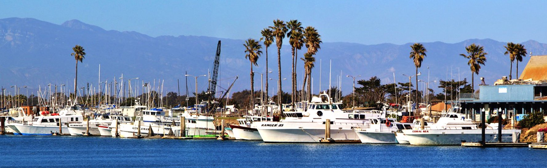 Channel Islands Sportfishing - CISCOS - image