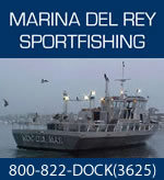 Southern California Deep Sea Fishing at Marina Del Rey Sportfishing